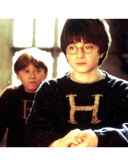 Harry Potter Sweater - Ugly Harry Potter