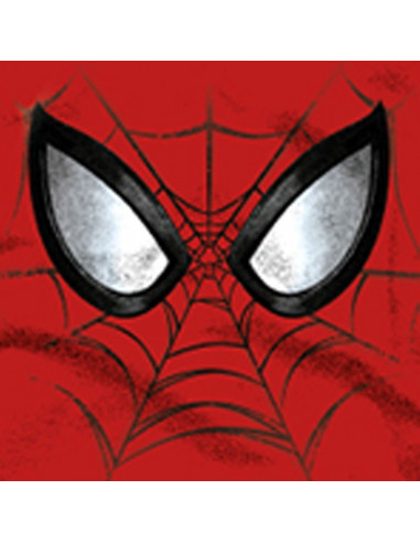 T-shirt Enfant Spider-Man Marvel - Mask Face
