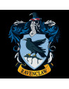 Harry Potter T-shirt - Ravenclaw Quidditch Team