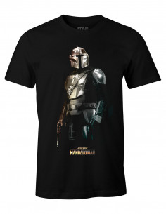 Star Wars The Mandalorian...